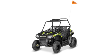 POLARIS RZR 170 BLACK